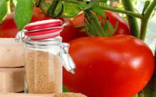 Подкормка помидоров дрожжами: дрожжевое удобрение для томатов в теплице, как приготовить раствор по рецепту и