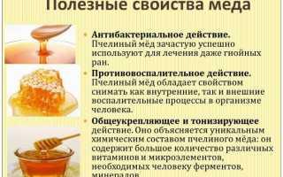 Алоэ с медом: рецепты для желудка, лечебные свойства и противопоказания, как приготовить и принимать от