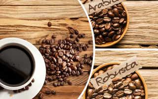В чем разница между арабикой и робустой? 16 фото Чем отличаются виды кофе, какие сорта лучше