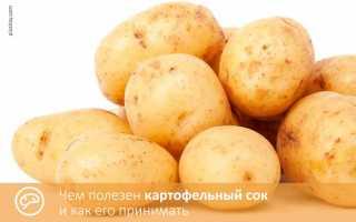 Картофельный сок (33 фото): польза и вред при гастрите, как принимать натощак напиток из картофеля,