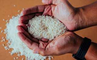 Рис Басмати (16 фото): отличие индийского риса от обычного и разница с видом Жасмин, рецепты
