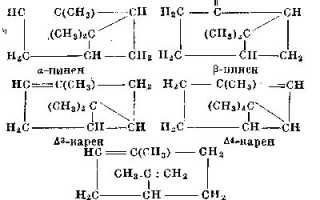 Терпентиновое масло: инструкция по применению очищенного масла в народной медицине, отзывы