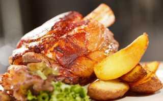 Свиная рулька в мультиварке (18 фото): пошаговый рецепт приготовления сочного и вкусного запеченного мяса в мультиварке