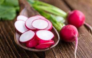 Редис для похудения: можно ли есть овощ на диете, польза и вред, калорийность и отзывы