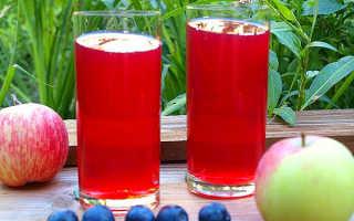Компот из терна: рецепт компота из терновника с косточками и с яблоками. Польза и вред компота. Когда собирают ягоды?
