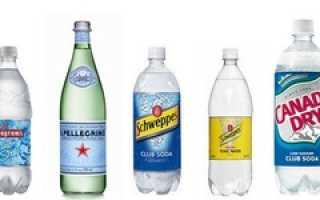Содовая вода для коктейлей: что это такое? Чем можно ее заменить? Чем отличается от газированной воды?