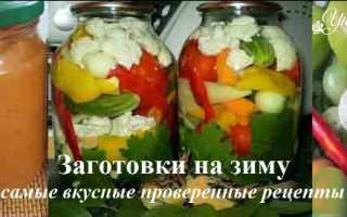 Рецепты вкусных заготовок на зиму из овощей (32 фото): лучшие варианты зимних овощных заготовок, приготовление маринованных продуктов и консервов