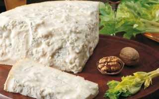 Сыр Горгонзола (18 фото): с чем едят сыр, рецепт его приготовления, чем можно заменить в