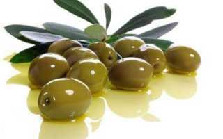 Оливковое масло для тела: применение для загара кожи на солнце, польза и вред продукта, можно
