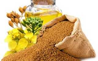 Полезные свойства рыжикового масла и противопоказания: как принимать нерафинированный продукт? Состав и использование для волос
