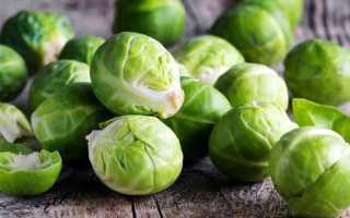 Брюссельская капуста (50 фото): выращивание и уход в открытом грунте, как вырастить овощ из семян или рассады