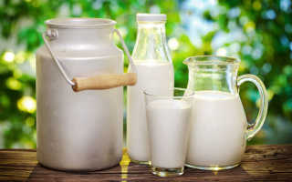 Коровье молоко: польза и вред, свойства для организма человека, как пить натуральный продукт