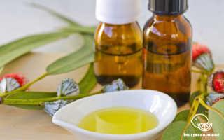 Эвкалипт: полезные и лечебные свойства, вред, применение в домашних условиях