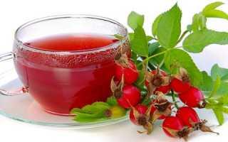 Напитки из шиповника: польза и вред быстрорастворимого шиповника для детей, как правильно сохранить витамины и