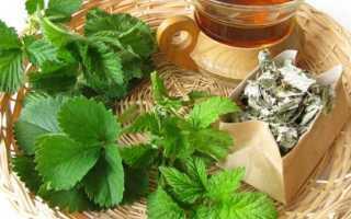 Листья клубники: полезные и лечебные свойства и противопоказания чая с ферментацией листьев садовой ягоды