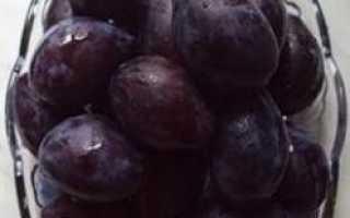 Кефир с черносливом: как есть на ночь и на завтрак, проведение чистки и разгрузочного дня