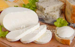 Брынза из коровьего молока в домашних условиях (24 фото): рецепты приготовления сыра, как сделать брынзу