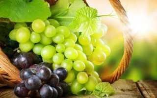 Яблочный смузи в блендере: рецепты смузи из яблок с молоком и водой, с виноградом и
