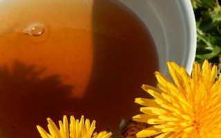 Чай из одуванчиков: польза и вред, рецепты приготовления из корня от рака и для печени,
