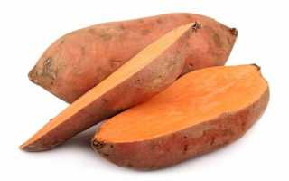 Батат (42 фото): полезные свойства сладкого картофеля, как вырастить из клубня, как готовить овощ