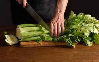 Черешковый сельдерей (30 фото): польза, вред и противопоказания стебля и что из него приготовить, калорийность растения
