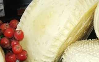 Сыр из козьего молока в домашних условиях (20 фото): рецепты приготовления, как можно сделать и как сварить правильно
