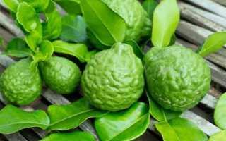 Чай с бергамотом (19 фото): что это, польза и вред растения, зачем его добавляют в