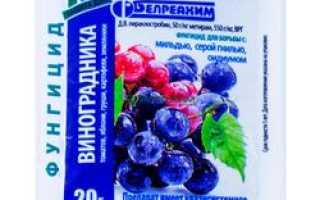 Фунгицид «Кабрио Топ» для винограда: инструкция по применению, обработка препаратом, отзывы