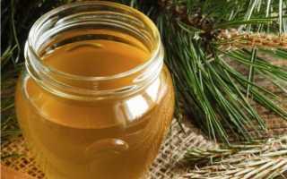 Мед с живицей: полезные свойства и противопоказания, как принимать кедровый продукт и проверить на подлинность
