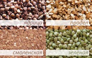 Гречневый продел: что это такое, как готовить колотые зерна гречихи, как варить на воде дробленую гречку