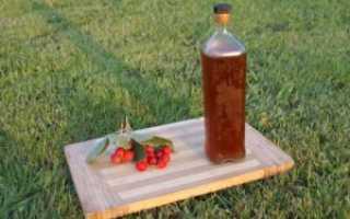 Настойка шиповника: полезные свойства напитка с боярышником и рецепт на водке и самогоне, польза и вред настоя в термосе
