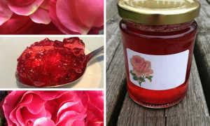 Варенье из лепестков роз: полезные свойства и вред, лучшие рецепты
