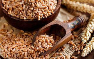 Польза и вред полбы для организма: полезные свойства каши, гликемический индекс крупы и калорийность, применяют
