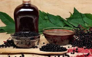Варенье из черноплодной рябины: сварить повидло из черной рябины с яблоками, рецепты полезных заготовок